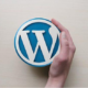 A Guide on Fixing the 403 Forbidden Error in WordPress